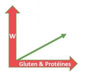 ratio force de farine et protéine